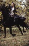 movie-2003-51.jpg